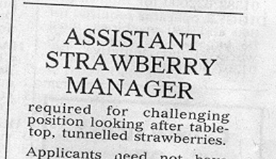 a picture of a job advert in a newspaper: Assistant Strawberry Manager